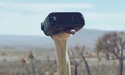 Strusie uczą się latać w goglach VR w najnowszej reklamie Samsunga